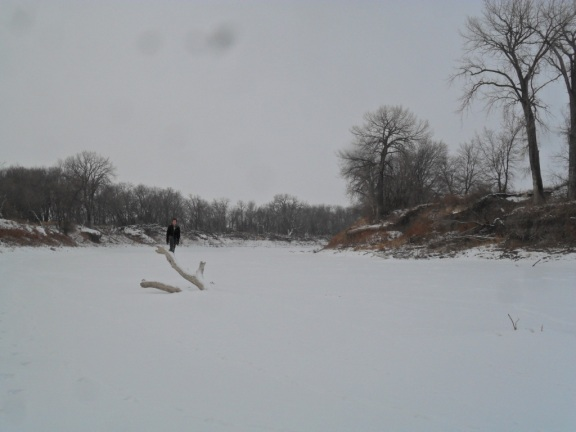 Me standing on a log jutting from the ice.